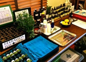 A shot of the apotheke. The Herbal First Aid Station is a combined efforts of many -- the Herbalista Free Clinic, the Appalachian School for Holistic Herbalism, Red Moon Herbs, Traditional Medicinals, and the Clinic Crew!